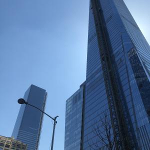纽约交友会员照片